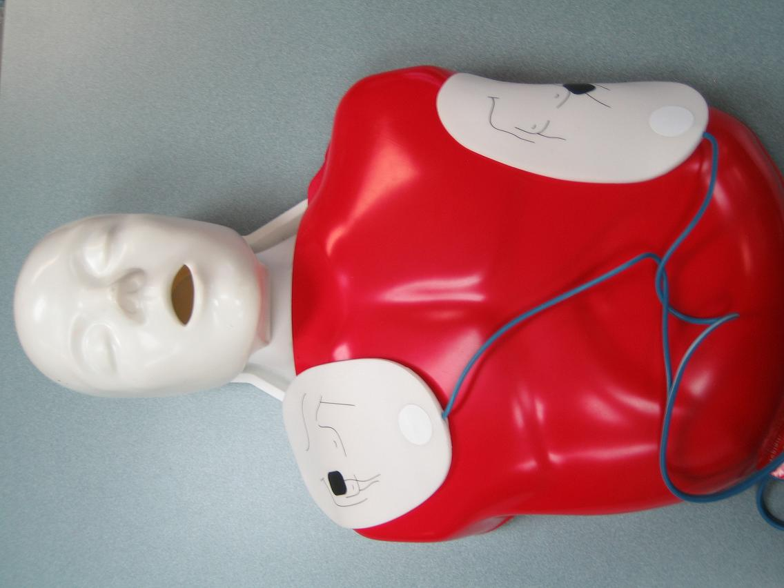 Workplace approved basic first aid classes in edmonton alberta aed pad placement xflitez Gallery